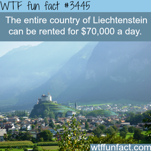 Rent the entire country of Liechtenstein -  WTF fun facts