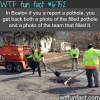 reporting a pothole in boston wtf fun fact
