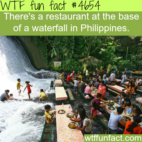 Restaurant at the base of a waterfall - WTF fun facts