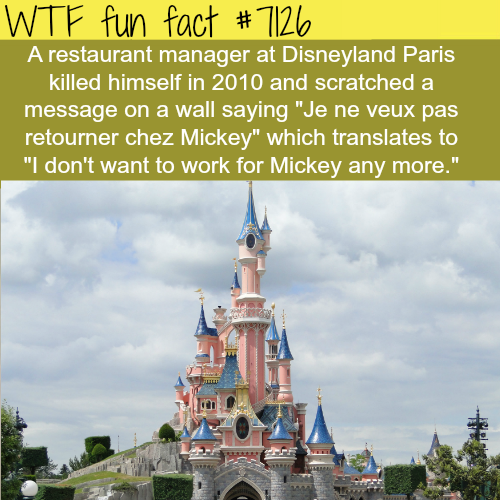 Restaurant manager at Disneyland commits suicide… - WTF fun facts