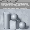 riddle me this wtf fun facts