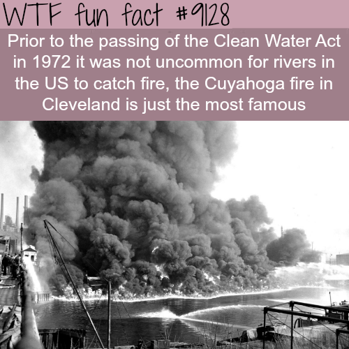 River on Fire - WTF fun fact