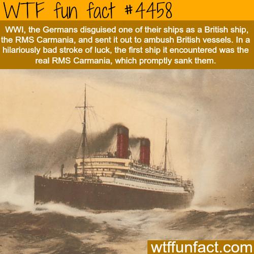 RMS Carmania -    WTF fun facts