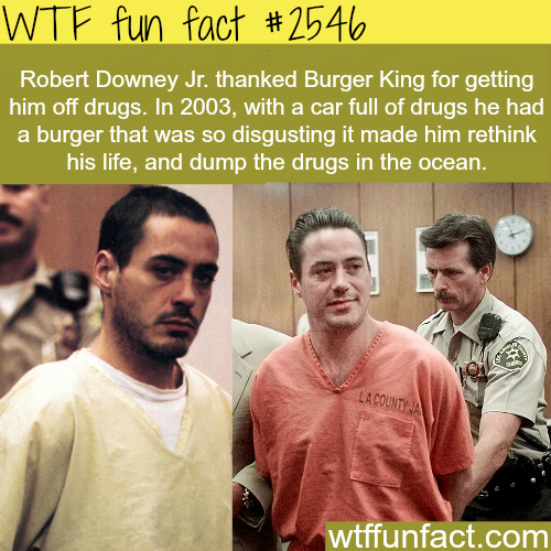 Robert Downey Jr. and Burger King - WTF fun facts
