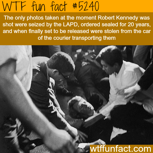 Robert Kennedy's photographs - WTF fun facts
