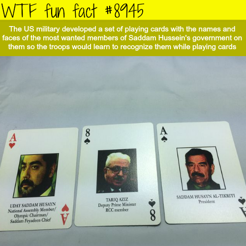 Saddam Hussein's playing cards - WTF fun fact