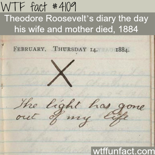 Saddest diary you will read -  WTF fun facts