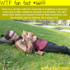 sammy the campus cat wtf fun fact