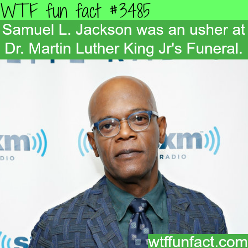 Samuel L. Jackson as an ushe at MLK funeral  -  WTF fun facts