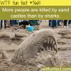sand castles are more dangerous than sharks