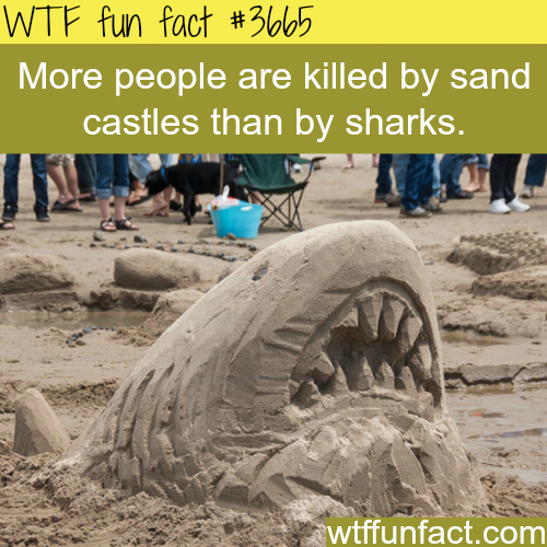 Sand castles are more dangerous than sharks -  WTF fun facts