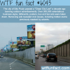 sao paolos clean city law wtf fun facts