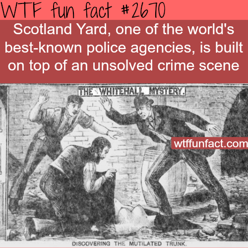SCOTLAND YARD POLICE - WTF fun facts
