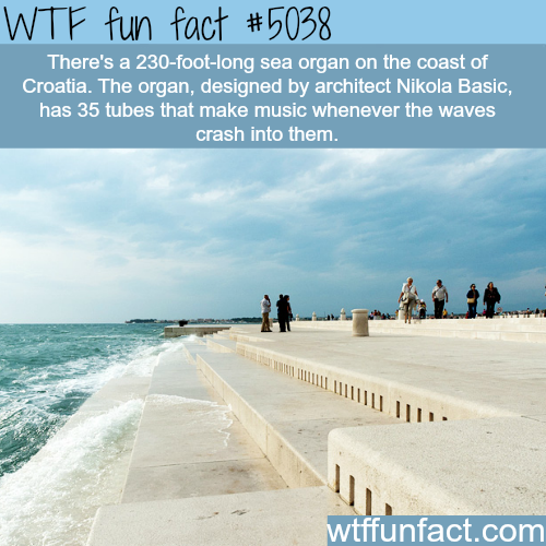 Sea organ in Croatia - WTF fun facts