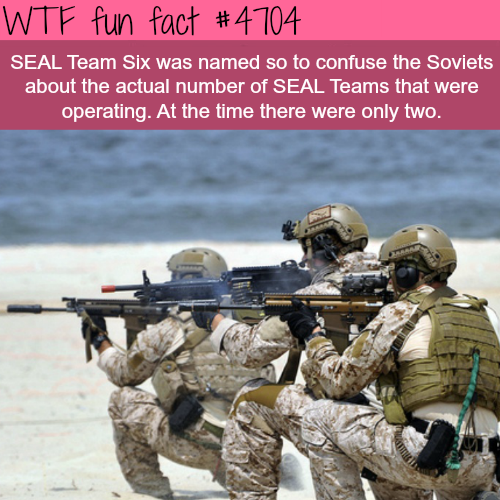 SEAL Team Six - WTF fun facts