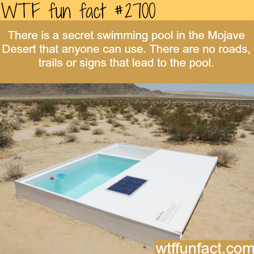 Secret swimming pool in the mojave desert -WTF funfacts