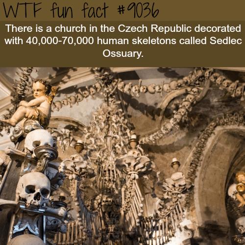 Sedlec Ossuary - WTF fun facts