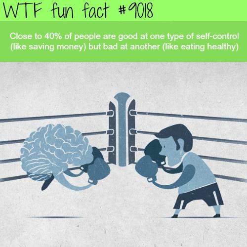 Self-control- WTF fun facts