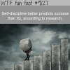 self discipline wtf fun fact