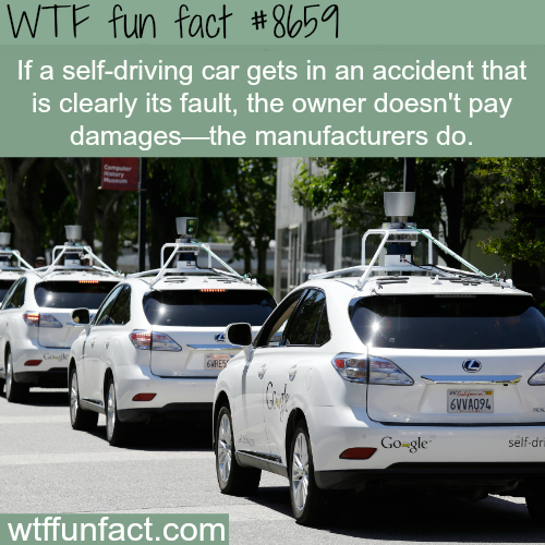 Self-driving cars - WTF fun facts