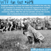 sergeant stubby wtf fun fact