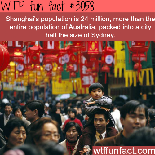Shanghai's population compared to Australia -WTF fun facts