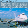 shit smell causes an airplane to return wtf fun