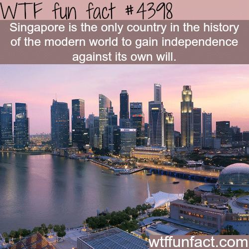 Singapore -   WTF fun facts