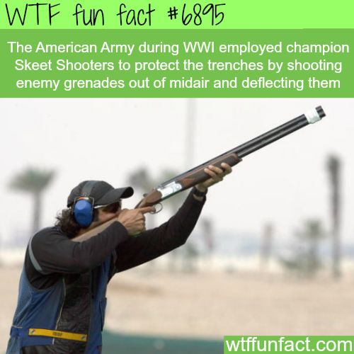 Skeet shooters were hired in WW1 to shoot off grenades  - WTF fun fact