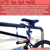 skunklock wtf fun facts