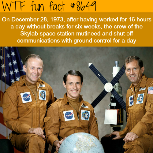 Skylab space station - WTF fun facts