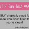 slut meaning