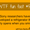 smile facts