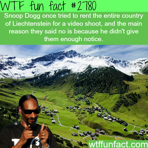 Snoop Dogg tried to rent a whole country -WTF fun facts