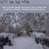 snowed or snew wtf fun facts