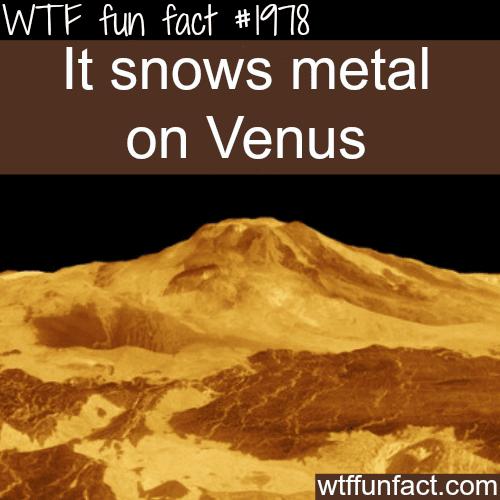 Snowing metal on Venus -WTF fun facts