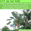solar power tree wtf fun facts