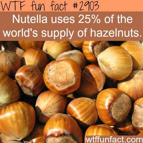 Some Nutella facts -  WTF fun facts