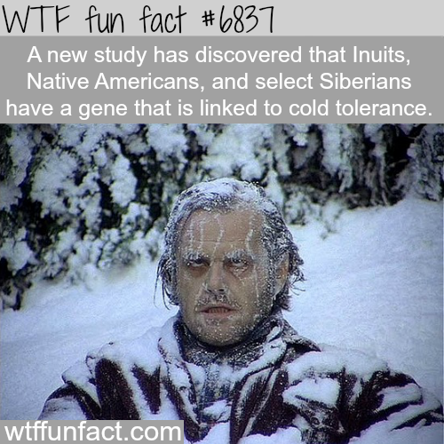 Some people have gene that make them tolerate cold - WTF fun fact