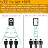 soundlazer wtf fun facts