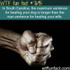 south carolinas weird laws wtf fun facts