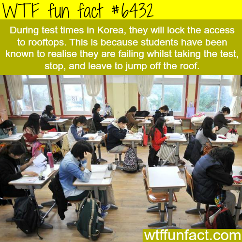 South Korea school exams - WTF fun facts