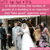 south korean weddings wtf fun facts