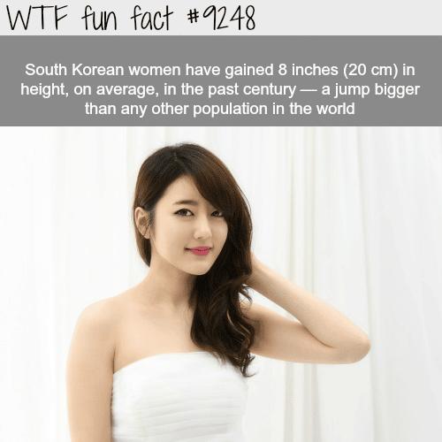 South Korean Women - WTF fun facts