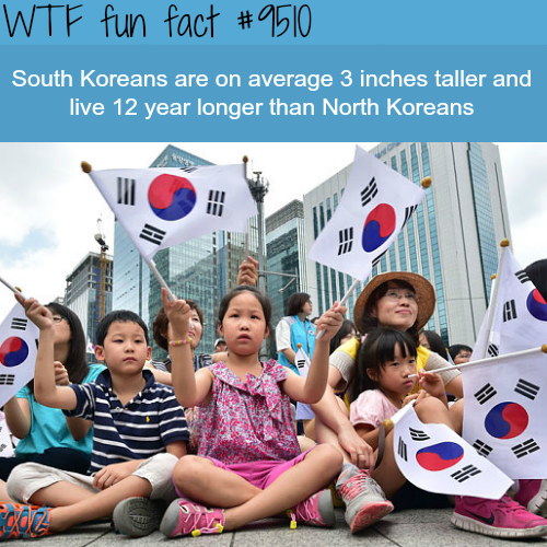 South Koreans vs North Koreans - WTF fun fact