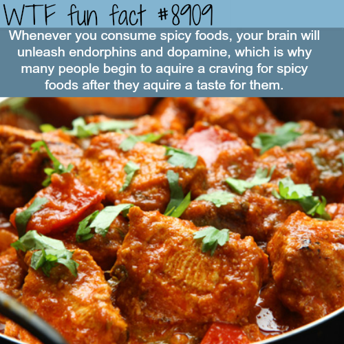 spicy foods wtf fun facts - WTF Facts