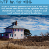 spite houses wtf fun facts