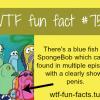 sponge bob facts