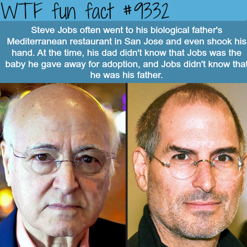 Steve Jobs - WTF fun facts