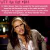 steven tyler wtf fun fact